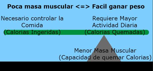 """""""Metabolismo lento"""""""