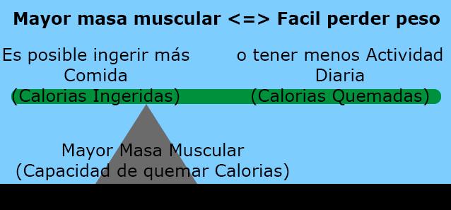Flaco Pata Hueca, alto porcentaje muscular.
